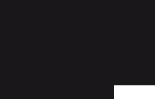 logo CRAZY CROW Ropa deportiva casual urbana